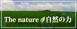 人類救済サイト 自然の力